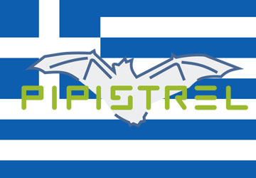 Logo Pipistrel Hellas